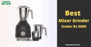 best mixer grinder under 5000